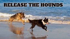 Release The Hounds Beach